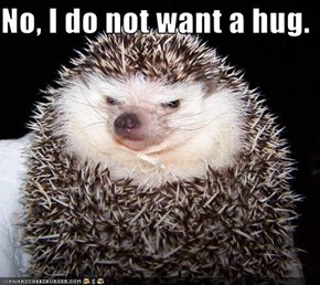 No, I do not want a hug.