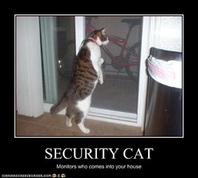 SECURITY CAT
