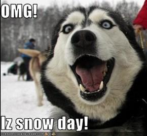 OMG!  Iz snow day!