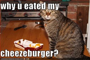why u eated my  cheezeburger?