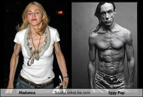 Madonna Totally Looks Like Iggy Pop