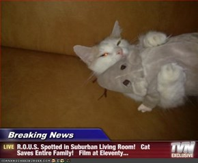 Breaking News           - R.O.U.S. Spotted in Suburban Living Room!   Cat Saves Entire Family!   Film at Eleventy...