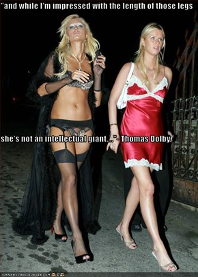 """and while I'm impressed with the length of those legs she's not an intellectual giant....""- Thomas Dolby"