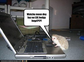 Watchu meen dey haz no LOL hedgy hogz!?!?!