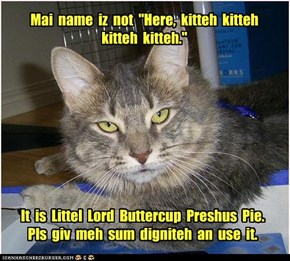"Mai  name  iz  not  ""Here,  kitteh  kitteh  kitteh  kitteh."""