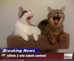 Breaking News -  kitteh 2 win talent contest