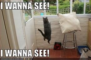 I WANNA SEE!  I WANNA SEE!