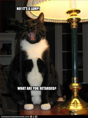 NO! IT'S A LAMP!