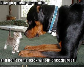 Now go quickly my minion,  and don't come back wif out cheezburger!