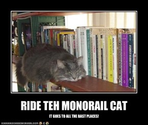 RIDE TEH MONORAIL CAT