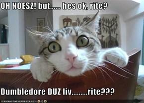 OH NOESZ! but...... hes ok, rite?  Dumbledore DUZ liv.........rite???