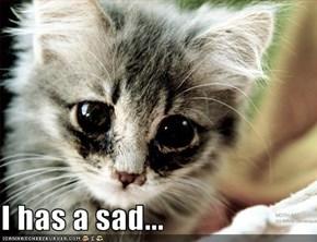 I has a sad...