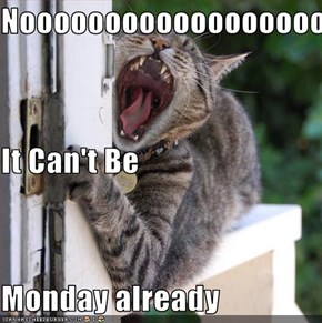 Nooooooooooooooooooooooooo It Can't Be Monday already