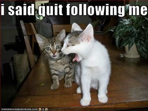 i said quit following me!