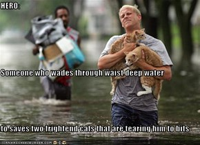 HERO:  Someone who wades through waist deep water to saves two frightend cats that are tearing him to bits
