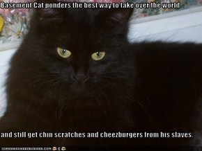 Basement Cat ponders the best way to take over the world  and still get chin scratches and cheezburgers from his slaves.