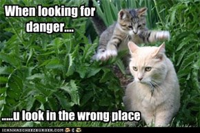 When looking for danger....
