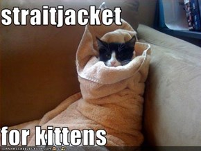 straitjacket  for kittens