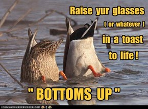 Raise  yur  glasses