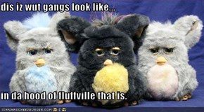 dis iz wut gangs look like...  in da hood of fluffville that is.