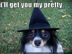 i'll get you my pretty. . .