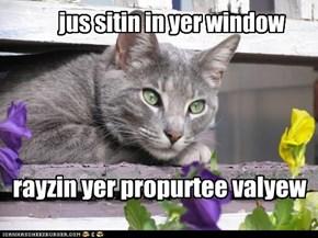 jus sitin in yer window