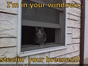 I'm in your windowz..  steelin' your breezes!!!