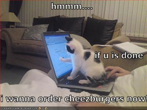hmmm.... if u is done i wanna order cheezburgers now!!