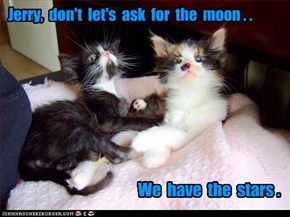 Jerry,  don't  let's  ask  for  the  moon . .
