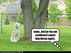 hehe...fell for the old cardboard cutout dog decoy again..