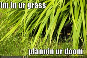 im in ur grass  plannin ur doom