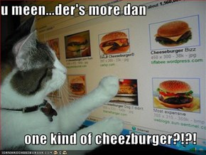 u meen...der's more dan  one kind of cheezburger?!?!