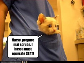 The OR Chronicles of Dr. Tinycat