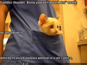 "Cuddles thought ""Bring your pet to work day"" would be a good idea Until he realized momma worked in a vet's office."