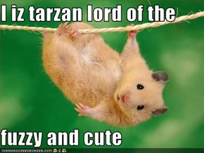 I iz tarzan lord of the   fuzzy and cute