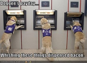 Doggee's payday....  Whishing these things dispensed bacon.