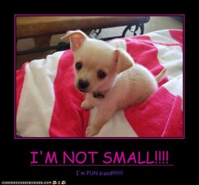 I'M NOT SMALL!!!!