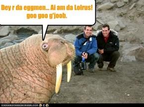 Dey r da eggmen... Ai am da Lolrus! goo goo g'joob.