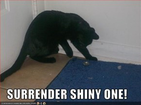 SURRENDER SHINY ONE!
