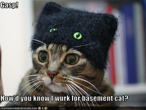 Gasp!  How'd you know I wurk for basement cat?