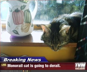 Breaking News - Monorail cat is going to derail.