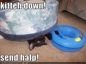 kitteh down!  send halp!