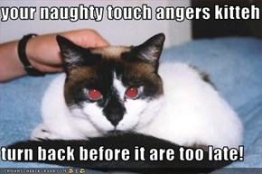 your naughty touch angers kitteh  turn back before it are too late!