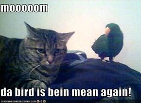 mooooom  da bird is bein mean again!