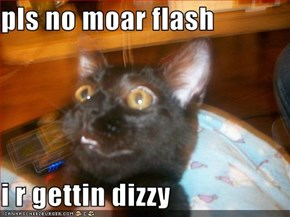 pls no moar flash  i r gettin dizzy