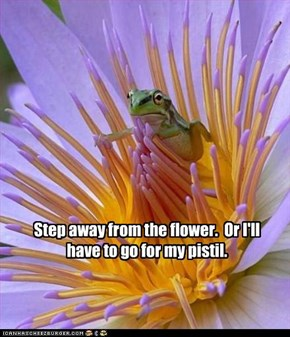 Step away from the flower.  Or I'll have to go for my pistil.