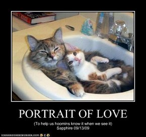 PORTRAIT OF LOVE