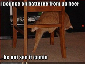 i pounce on batteree from up heer  ...he not see it comin