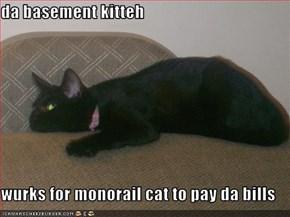 da basement kitteh  wurks for monorail cat to pay da bills