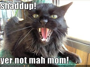 shaddup!  yer not mah mom!